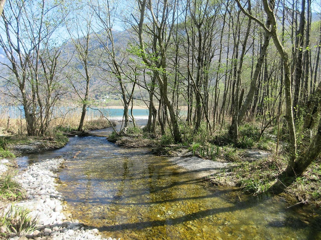 L'Ire à son embouchure sur le lac