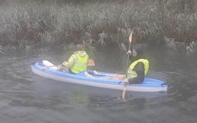 Chantier nettoyage des roselières en kayak