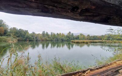 Sortie des Amis à la Réserve naturelle du delta de la Dranse